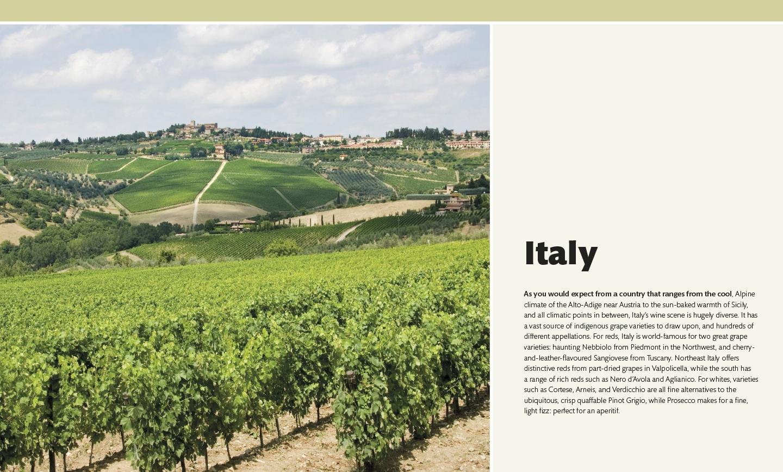 Wine_book_design_by_Designbite_1.jpg
